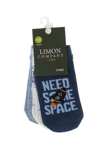 Limon Company Spor Çorap Renkli